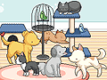 Play Pet Daycare Decoration