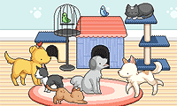 Pet Daycare Decoration